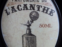 Parfum Acanthe